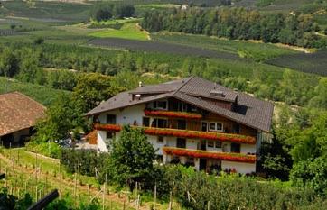 Pension Petaunerhof Schenna - Anbieter Petaun