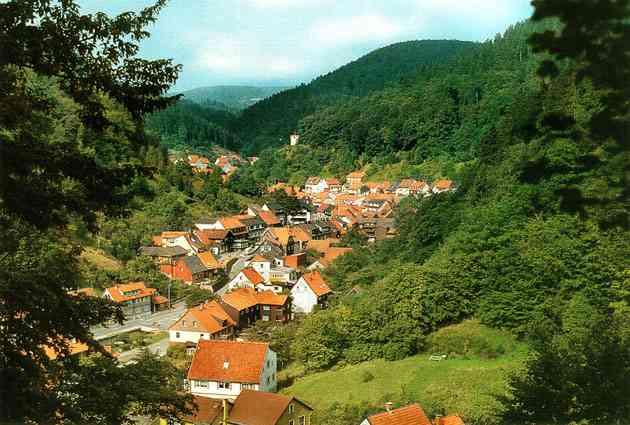 Ferienhaus Zorge Harz