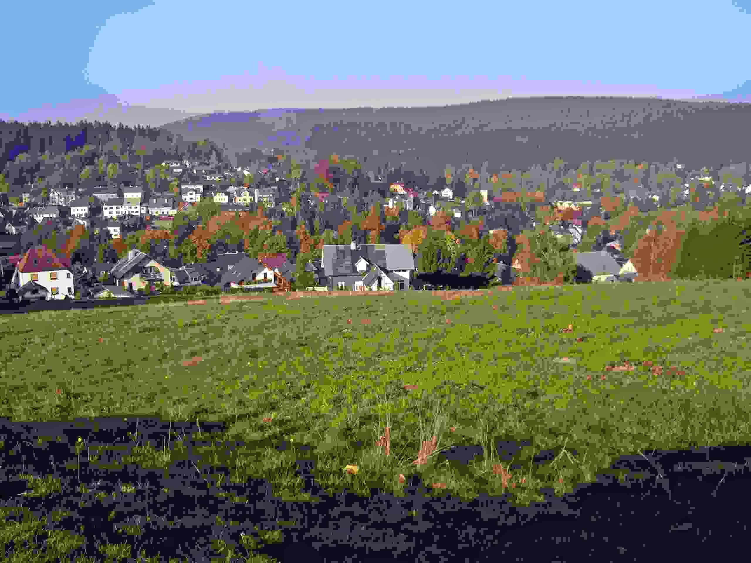 Ferienwohnung Thüringer-Wald