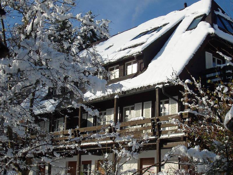 Ferienhaus Donau Hinterzarten - Alpersbacherstr. 20 79856 Hinterzarten - Anbieter Graf - Ferienwohnung Nr. 40514138