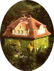 Ferienwohnung  - Ferienwohnung in Falkenstein