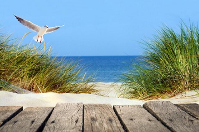 Ferienwohnungen und Ferienhäuser an der Ostsee
