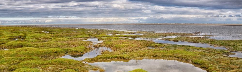 Urlaub in Insel Ameland