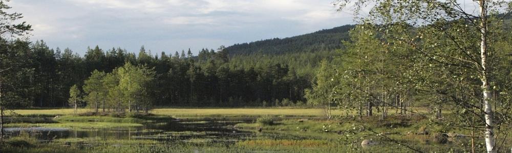 Urlaub im Värmland