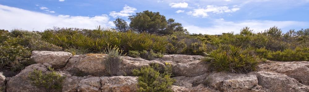Urlaub in Alcossebre Castellon