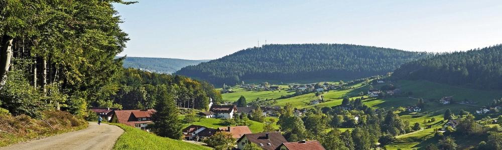 Urlaub in Baiersbronn-Schönmünzach