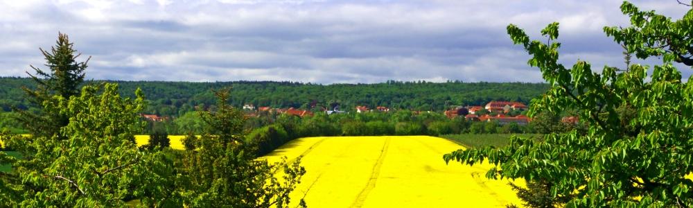Urlaub in Ballenstedt