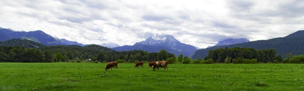 Urlaub in Bischofswiesen