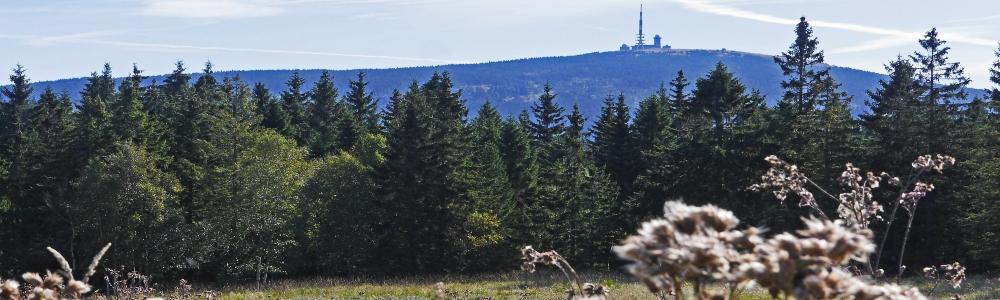 Urlaub in der Region Oberharz
